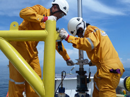 Pipeline Maintenance and Associated Services